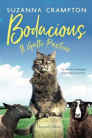 Bodacious - Il gatto pastore