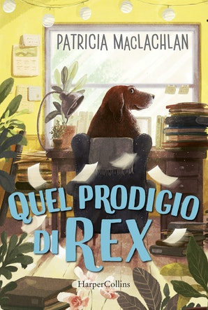 Quel prodigio di Rex!